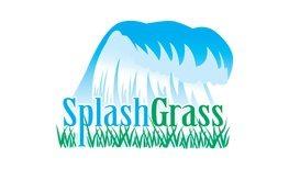 splashgrass by foreverlawn of northern ohio