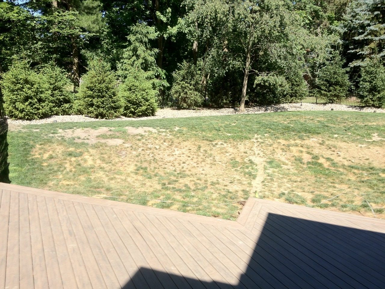 Install K9Grass for a Better Looking Lawn!
