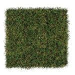 DuPont™ ForeverLawn® Select EL