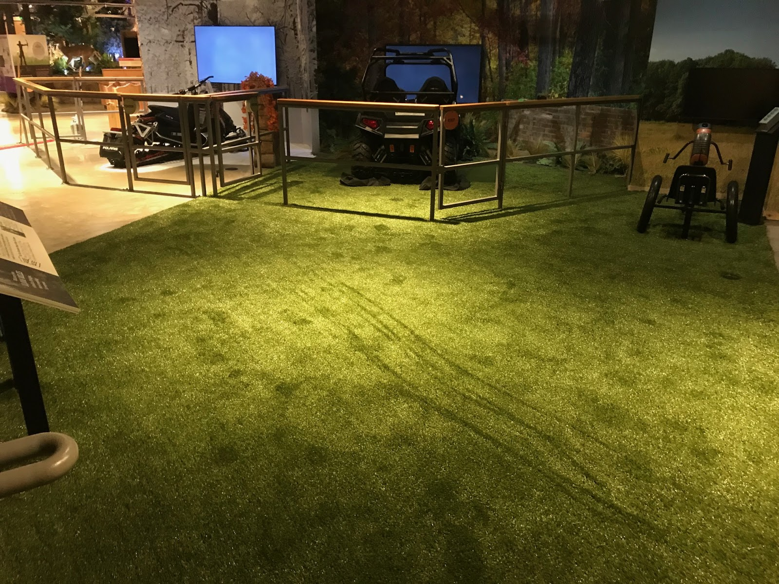 Contact ForeverLawn Northern Ohio to schedule a free Playground Grass consultation!