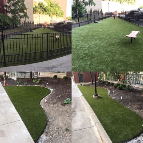 The Archer Apartments dog park featuring K9Grass Lite