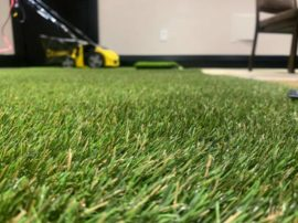 What Makes Our ForeverLawn K9Grass Distinct