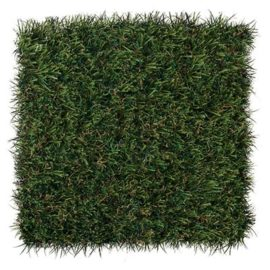 4 Varieties of DuPont™ ForeverLawn® Select Synthetic Grass