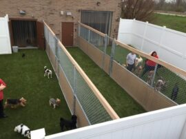 Artificial Grass Do's and Don'ts
